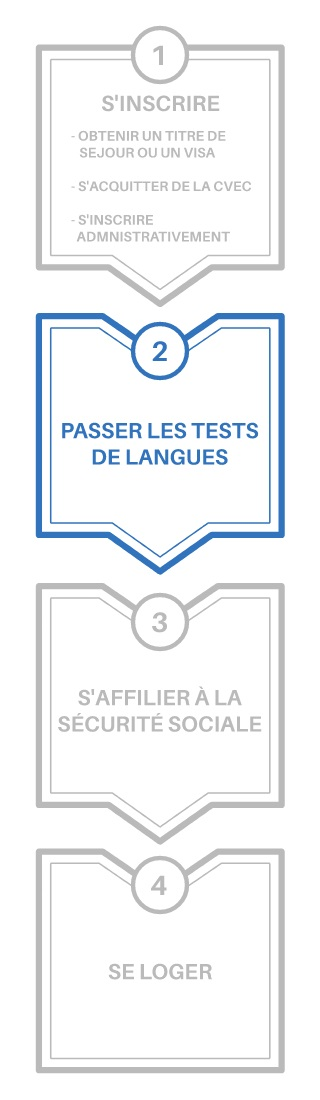 Schéma démarches tests de langues